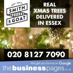 Real Christmas Trees Delivered - Smith & Goat