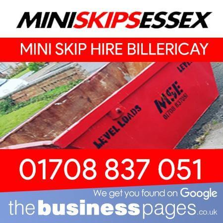 Mini Skip Hire Billericay - Mini Skips Essex Ltd