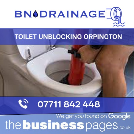Toilet Unblocking in Orpington including Bromley, Beckenham, West Wickham, Chislehurst, Swanley, Dartford, Sevenoaks, Westerham, Edenbridge, Tunbridge Wells, Tonbridge, Sidcup, Bexley, Maidstone & Kent.
